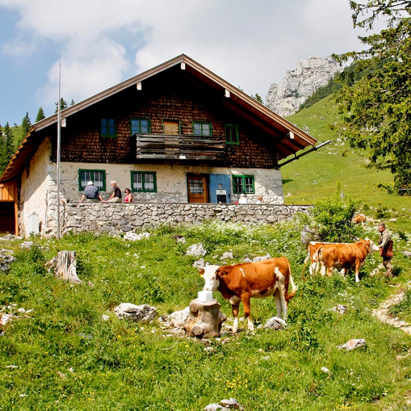 Que faire en vacances dans les Alpes ?