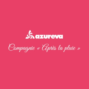Azureva partner of the company