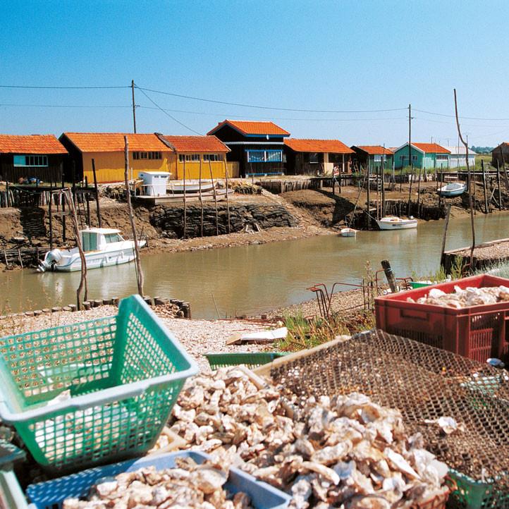 village vacances charente maritime ronce les bains marennes oleron