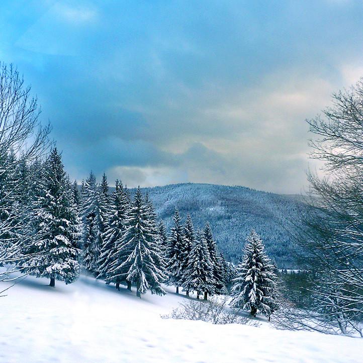 village vacances location hiver bussang montagne a decouvrir