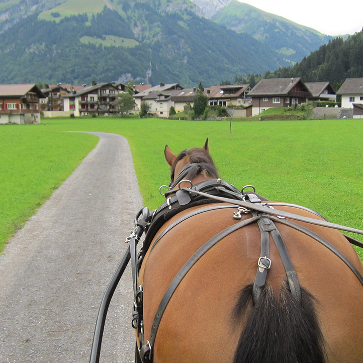 vacances montagne la clusaz confins activites
