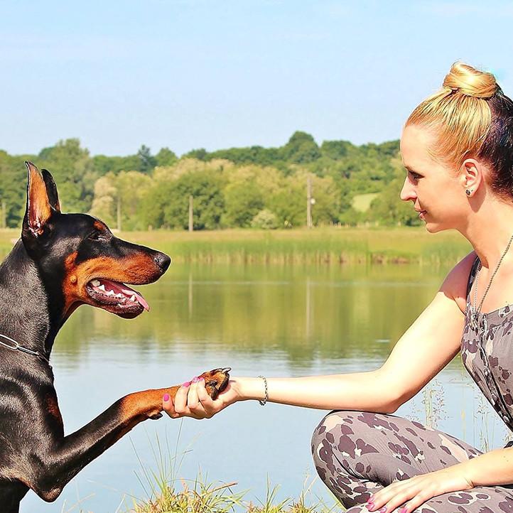 village vacances longeville sur mer complicite chien
