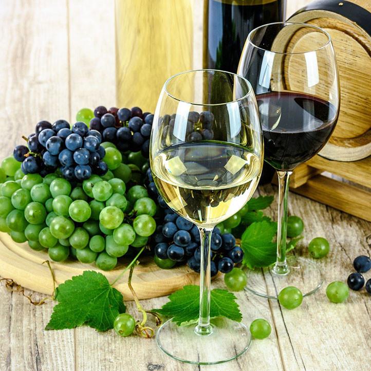 village vacances vins et sud londe les maures oenologie