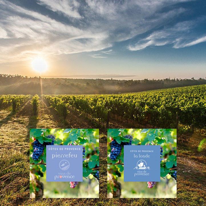 village vacances la londe les maures oenologie visites vignes
