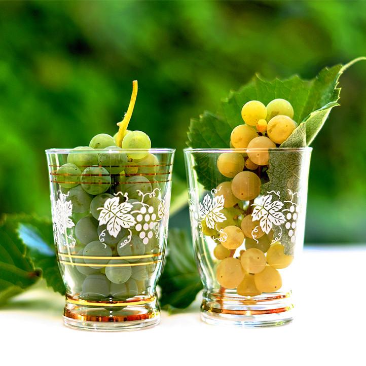 village theme vins et sud londe les maures oenologie