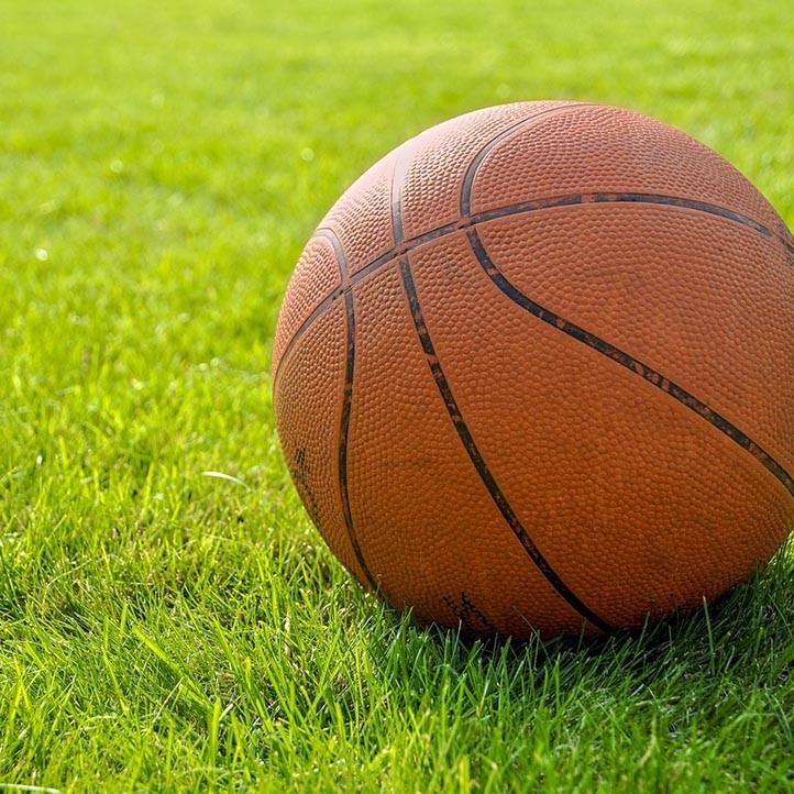 sports loisir basket argeles
